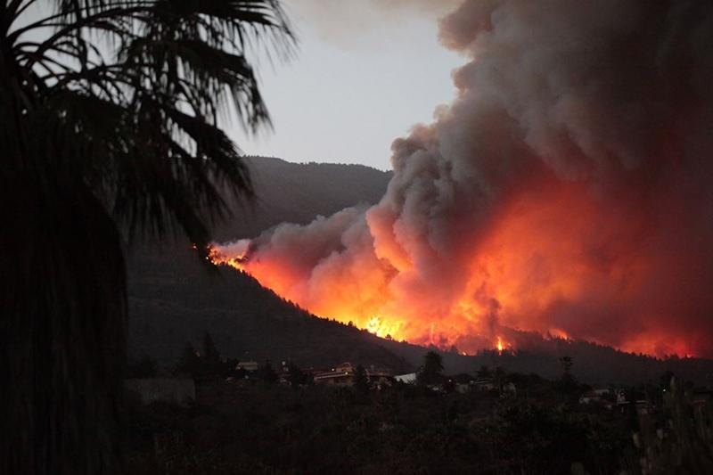 Die Flammen lodern oberhalb von El Paso: Dieses Foto von Palmex Cactus Garden ist eine Nahaufnahme circa einen Kilometer entfernt.