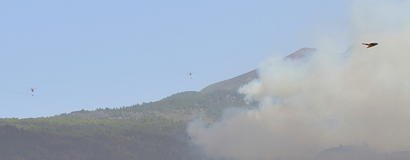 Waldbrand La Palma 16 Uhr: Die Hoffnung des Cabildo vom morgen, das Feuer bis gegen Abend kontrollieren zu können, scheint sich nicht zu erfüllen. Die Flammen fressen sich weiter nach oben. Die Befürchtung ist, dass sie den Osten der Insel erreichen, wo die Löscharbeiten noch schwieriger sind. Foto: La Palma 24