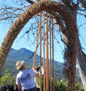 Manolo Villalba: Die geölten Sprunglanzen werden zum Trocknen aufgehängt. Foto: La Palma 24