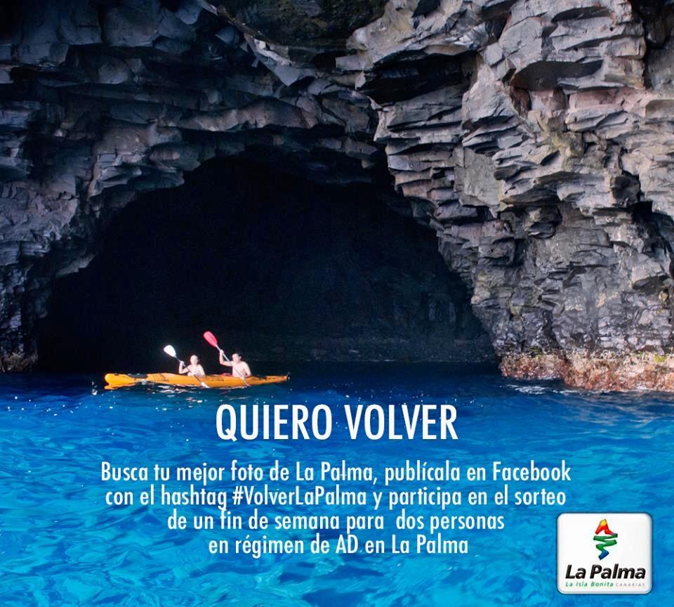 News ticker tengo noticias de la palma 8 la for Oficina turismo palma