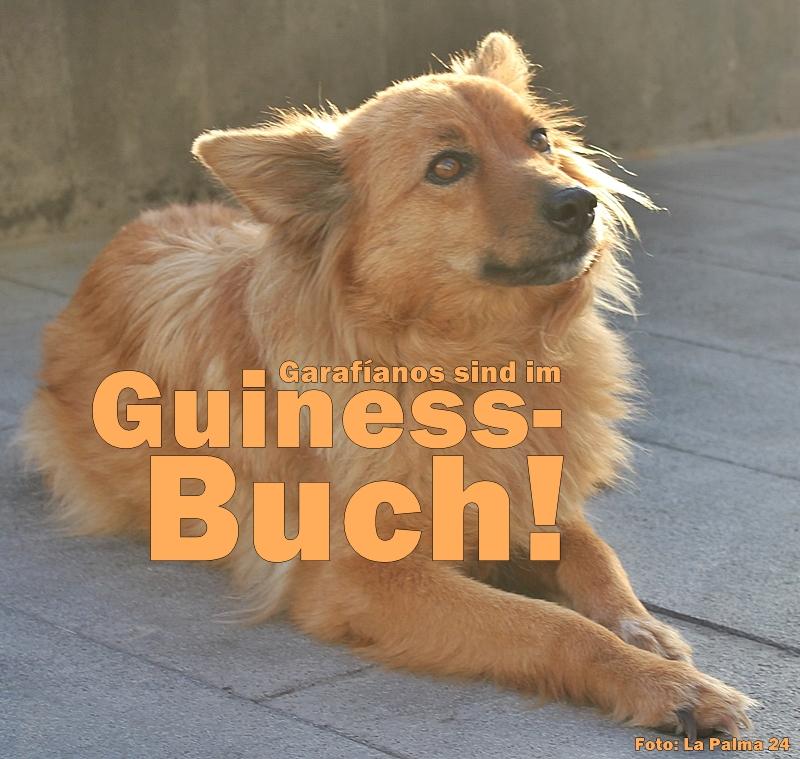 garafianos-la-palma-guiness-buch