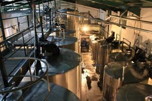 Blick in die Bodega: In hochmodernen Tanks reifen hier die meisten Vega Norte-Weine. Foto: La Palma 24
