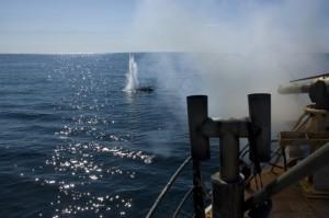 Walfang zu Forschungszwecken: Dieses von den Japanern vorgeschobene Argument soll besser kontrolliert werden. Pressefoto IWC