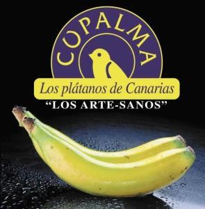 Bananen heißen auf La Palma Plátanos: klein und schmackhaft.
