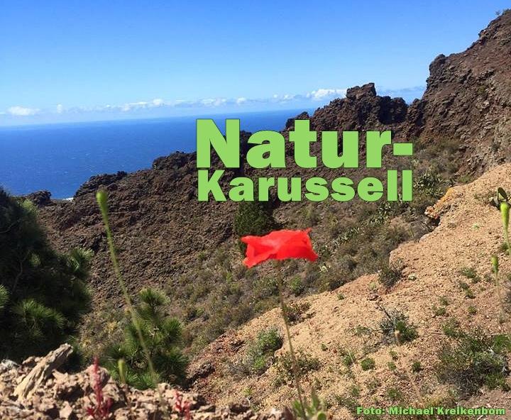 Natur-Paso-Titel-Kreikenbom-Foto