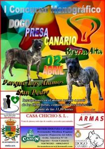 Wettbewerb: Der Dogo Canario auf dem Prüfstand.