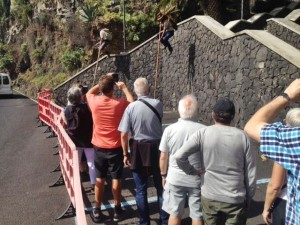 Salto del Pastor-Schau: gratis in Santa Cruz. Foto: CIT Tedote