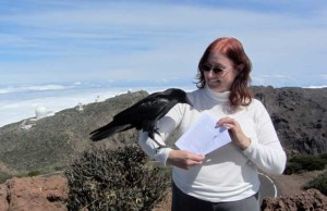 Sheila Crosby: viele Touristen kennen sie von Führungen auf dem Roque.