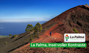 turismo_la_palma_2017