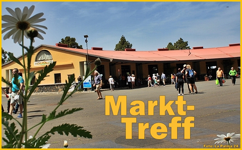 puntagorda-bauernmarkt-titel1-april-2017