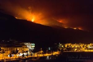 Waldbrand 2016 auf La Palma: Rund 4.800 Hektar Wald und landwirtschaftliche Nutzfläche brannten ab. Foto: Montserrat Alejandre