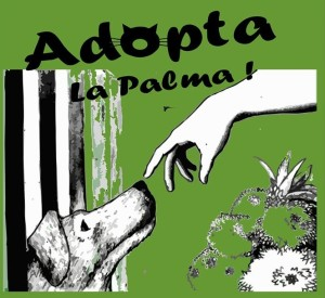 Tiermesse in San José: Event für tierliebe Menschen.