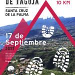 10 Kilometer durch den Osten von La Palma.