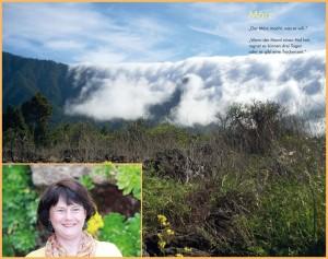 Ines Dietrich schrieb die Geheimnisse der Insel La Palma auf der Basis von eigenen Erfahrungen mit viel Hingabe: Entstanden ist ein informative