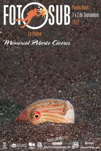 Unterwasser-Fotowettschießen: läuft im Rahmen des Festival del Mar im September in Puerto Naos.
