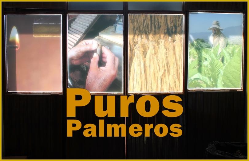 julio-puros-brena-alta-la-palma-titel