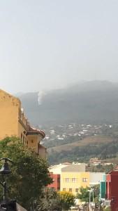 Feuer über Brena Baja: zum Glück schnell unter Kontrolle. Foto: BRIF