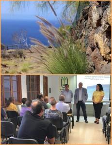 Das Lampenputzergras hat sich auf La Palma schon überall ausgebreitet (Foto oben): Die Inselregierung informierte die Teams über die fachgerechte Eliminierung des Bioinvasoren - dieser Tage rücken die Teams aus. Fotos: Michael Kreikenbom/Cabildo