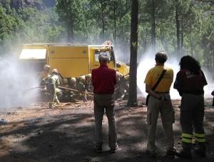 Die Gefahr ist noch nicht vorbei: Cabildo-Mitarbeiter beim Training zur Waldbrandbekämpfung.