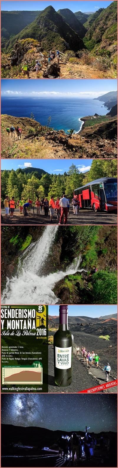 Wanderfestival La Palma: Bei geführten Touren die Isla Bonita entdecken. Fotos: Festival de Senderismo La Palma