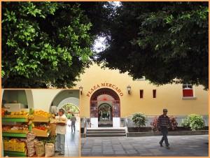 Die Markthalle von Los Llanos: Frisches in dem schönen Gebäude aus den 1970er-Jahren. Fotos: La Palma 24