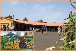 Die Markthalle von Puntagorda: Frisches und Kunsthandwerk. Fotos: La Palma 24