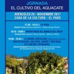 Avocadoanbau: Infos in El Paso.