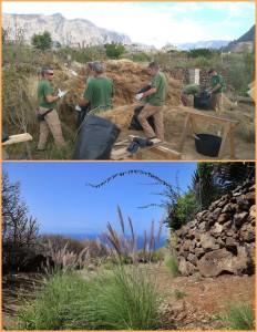 Mitarbeiter des Inselumweltamtes bei der Beschlagnahmung