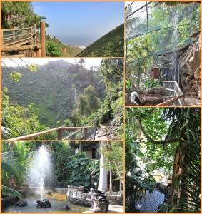 """Just a kind of magic: Der Maro Parque mit seinen """"verwunschenen"""" Winkeln im Barranco El Galeón. Fotos: La Palma 24"""