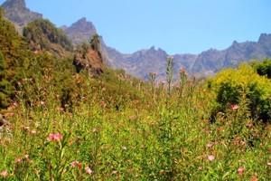 Schönes Wetter auf La Palma: optimal für Wanderungen! Foto: Fernando Rodríguez