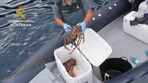 Kontra der Wilderei im Meer: Langusten-Diebe auf frischer Tat vor der Küste von La Palma entdeckt. Foto: Guardia Civil