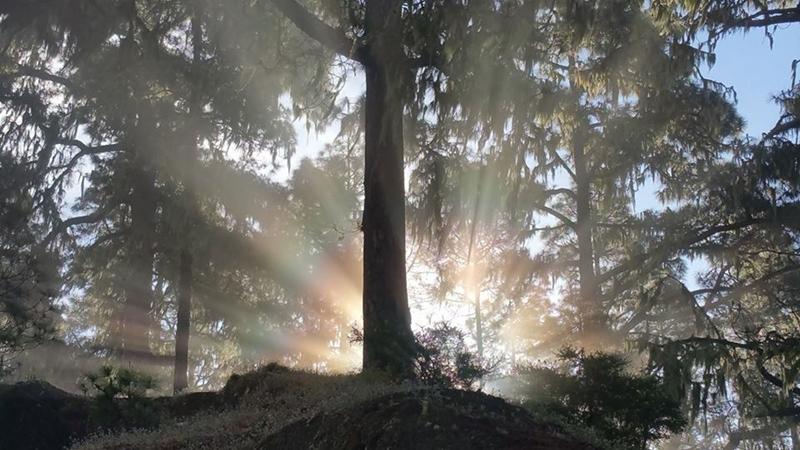 Und immer wieder geht die Sonne auf: Das La Palma 24-Journal wird zum Jahreswechsel übersichtlicher.