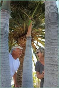 Sylvia Hess und Harald Braem: Das Künstlerehepaar genießt das Leben ein paar Monate im Jahr in La Punta auf La Palma.