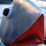 sardine-santa-cruz-de-la-palma-foto