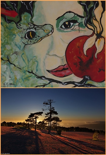 Neue Ausstellungen kommen: Sylvia Hess (oben) und Giovanni Tessicini zeigen ihre Werke.