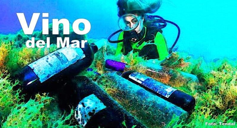 tendal-bodega-submarina-titel-800-min