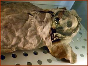 MumieSanta Cruz de Tenerife ( Spanien ). Museo de la Naturaleza y el Hombre - Guanche Sammlung: Mumie ( ca. 830 n.Chr. ) einer Frau, 20-24 Jahre alt, mit Spuren von Unterernährung, aus Barranco de Badajoz ( Güimar / Teneriffa ) Wolfgang Sauber Wiki