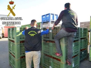 Specialists against the theft of fruit and vegetables: Civil Guard sets up special patrol on La Palma. Photo: Guardia Civil