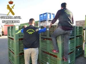 Spezialisten gegen den Klau von Obst und Gemüse: Guardia Civil richtet Spezial-Patrouille auf La Palma ein. Foto: Guardia Civil