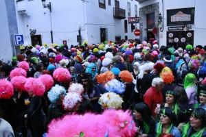Fiesta de la Peluca: Wettbewerb um Kunsthaarkunst. Foto: Stadt
