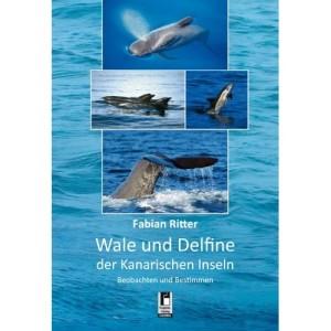 Das erste Buch von Fabian Ritter: hilft beim Bestimmen, wenn man Cetaceen sichtet.