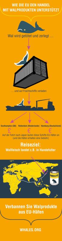 WDC-Infografik: