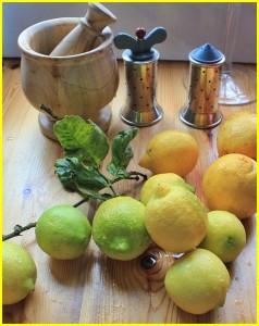 Auf La Palma keine Seltenheit: Man hat Zitronen und Orangen im Garten. Foto: La Palma 24