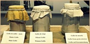Gofio ist nicht gleich Gofio: Beim Einkauf genau schauen, welche Mischung sich in der Verpackung befindet. Im Handel gibt es vom puren Weizen-Gofio über Mischungen mit anderen Getreidesorten bis hin zum Hülsenfrüchte-Mix eine bunte Palette. Foto: Fernando Rodríguez/Palmeros en el Mundo