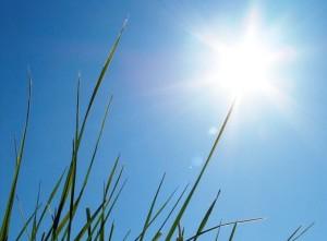 Sommer 2018: Gesund durch die heiße Jahreszeit.