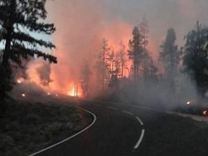 Auf Teneriffa hat es gebrannt: Achtung Inselgäste, auch auf den Höhen von La Palma ist das Waldbrandrisiko groß.