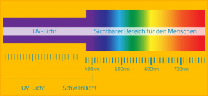 Das Lichtspektrum: