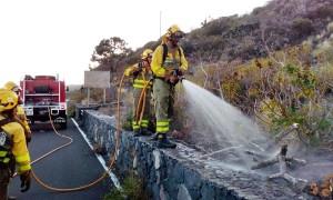 Schneller Alarm und schneller Einsatz: Das Feuer in Fuencaliente konnte sich nicht ausbreiten. Foto: GobCan