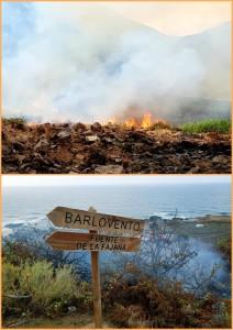 Dank der Bomberos schnell gelöscht: Feuer in Barlovento-La Fajana. Fotos: Gemeinde