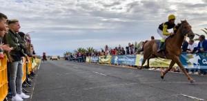 Pferderennen auf der Isla Bonita: strenge Dopingkontrollen. Foto: La Palma Encuestre